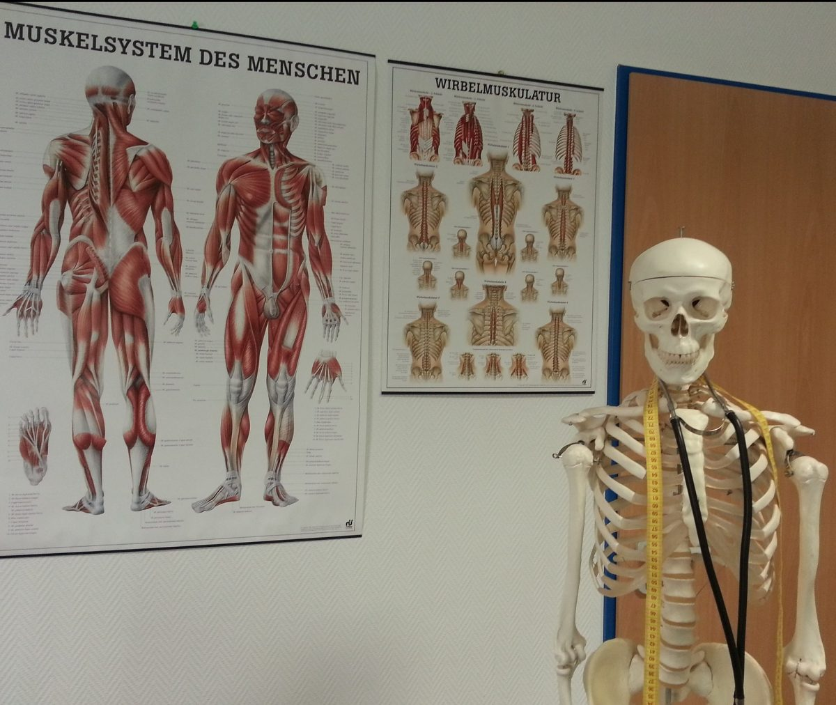 Medizinische Basiskenntnisse